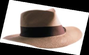 highlights-hat